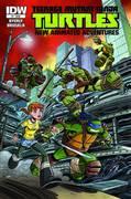 Tmnt New Animated Adventures