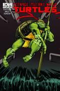 Teenage Mutant Ninja Turtles Ongoing