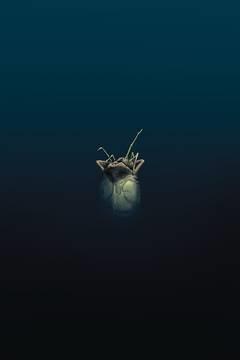 William Gibson Alien 3